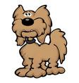 cute cartoon labradoodle dog cartoon vector image