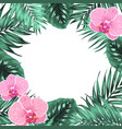 tropical jungle orchid palm monstera leaves frame vector image vector image