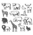 wild animals and birds icons vector image vector image
