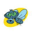 funny fly vector image