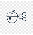 apple and honey concept linear icon isolated on vector image