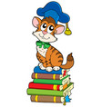 cat teacher on pile of books vector image