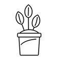 eco plant pot icon outline style vector image vector image
