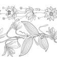 Seamless brush from lotus and vanilla