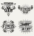 set vintage emblems vector image