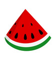 slice of juicy summer watermelon vector image