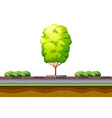 Tree and bush on the street vector image vector image