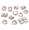 cacao sweets chocolate candy confectionery food vector image