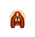 cute dog dachshund logo mascot cartoon character vector image
