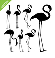 Flamingo bird silhouettes vector image