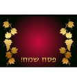 Happy Passover Hebrew wish card vector image
