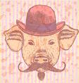 Hat Pig Mustache vector image vector image