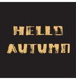 Hello Autumn Hand drawn modern grunge vector image