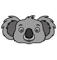 koala face australian wildlife white background vector image