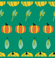 maize plant crop and pumpkins on green background vector image vector image