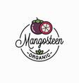mangosteen fruit logo linear mangosteen slice vector image