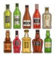 set different bottles vector image