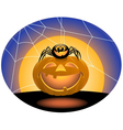 Spider and pumpkin vector image vector image