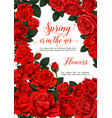 spring roses flowers love greeting card vector image vector image