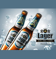 design of advertising beer with two bottles in vector image vector image