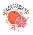 hand draw grapefruit half and vector image