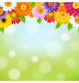 Color Gerbers Flower Frame vector image vector image