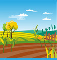 cultivated agriculture field rural landscape