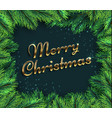 fir tree branches merry christmas glamour vector image vector image