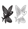 flying fish vector image vector image
