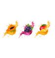 fruits in splash juice mango grapes papaya vector image vector image
