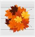 hello autumn background with colorful leaves vector image vector image