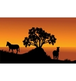 Landscape silhouette of zebra at the morning vector image vector image