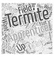 Termite Apprentice Word Cloud Concept vector image vector image