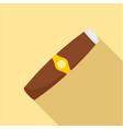 luxury havana of cuba icon flat style vector image