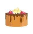 Sponge Cake With Chocolate And Berries Decorated vector image