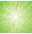 sun burst blast background green vector image vector image
