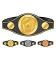 three champion belts vector image