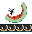 Watermelon color 01 vector image