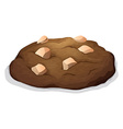 Chocolate cookie with nuts vector image vector image