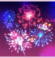fireworks sparkling background vector image