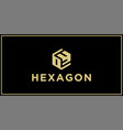 oy hexagon logo design inspiration vector image vector image