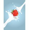 Strawberry milk splash vector image