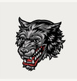 angry wolf head colorful concept vector image