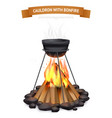 cauldron with bonfire composition vector image