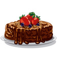 chocolate cake with berries vector image vector image