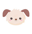 cute little dog face animal cartoon isolated white vector image vector image