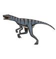 dinosaur velociraptor skeletons fossils vector image