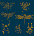 Set of the insects vector image