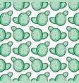 cactus plants exotic pattern background vector image
