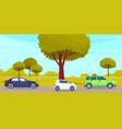 cars drive on an asphalt road in countryside vector image vector image